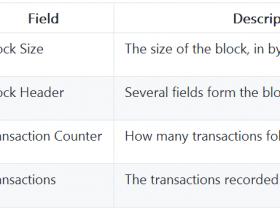 精通比特币(61):区块结构
