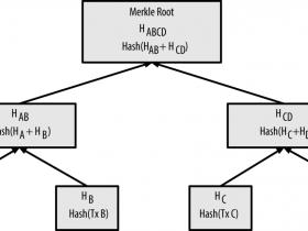 精通比特币(65):区块中的Merkle树